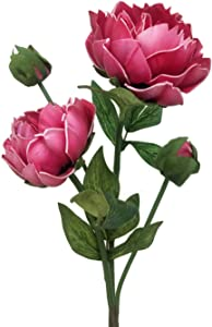 """Floral Kingdom Real Touch Artificial Latex 20"""" Beijing Peony Flowers for Floral Arrangements, Bridal Bouquets, Home/Office Decor (2 PK) (Fuchsia)"""