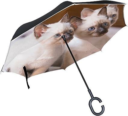 Car Reverse Folding Umbrella Inverted Umbrella with Cute Siamese Cat Funny Print