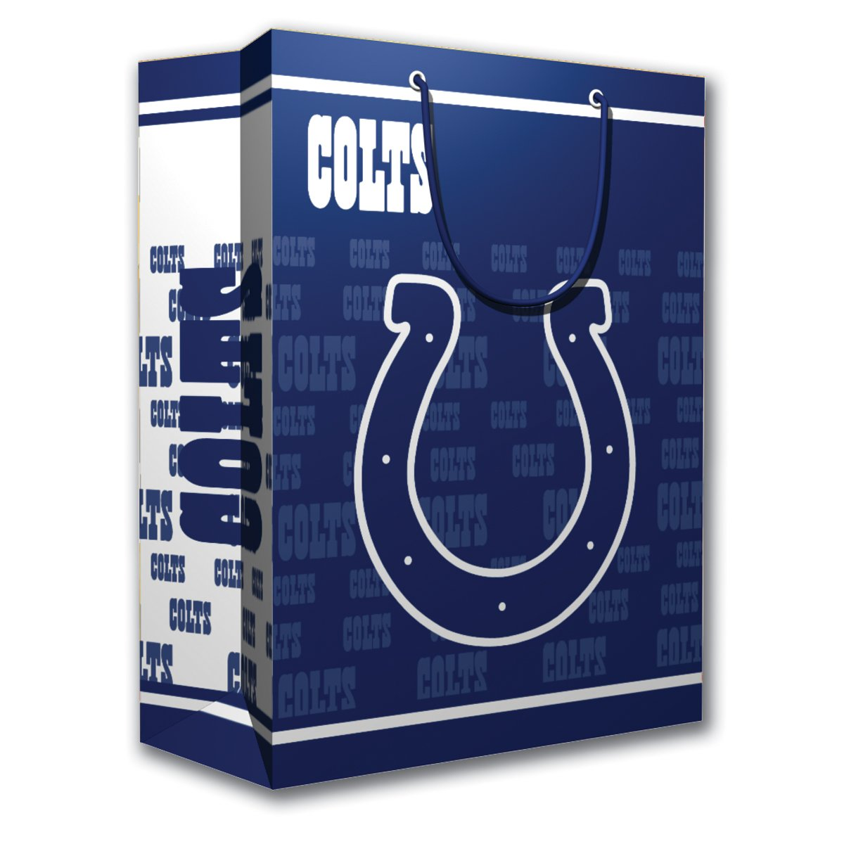 PSG INC NFL Gift Bag Great for Sports Fans