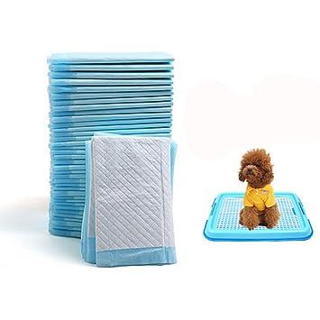 UEETEK Empapador Toallitas de Entrenamiento para Mascotas Perros Cachorros Super Absorbente 60cm x 90cm 20 Unidades: Amazon.es: Deportes y aire libre