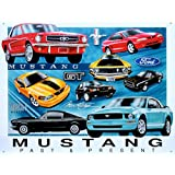 Ford Mustang Past and Present Chronology Evolution History Car GT Shelby Retro Vintage Tin Sign - 13x16
