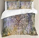 Ambesonne Rustic Duvet Cover Set King Size, Annual Rings of Wood Growth Aging Theme Dirty Inner Tree Body Branch Whorls Width Design, Decorative 3 Piece Bedding Set with 2 Pillow Shams, Brown