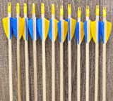 No frontiers archery economy arrows Youth Economy Wood Arrows yellow and blue (12)