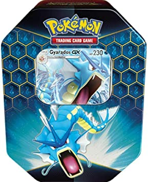 Lively Moments Naipes de Pokemon Caja de Lata Sun&Moon Hidden ...