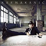 Who's The Boss In The Factory by Karmakanic (2008-11-18)