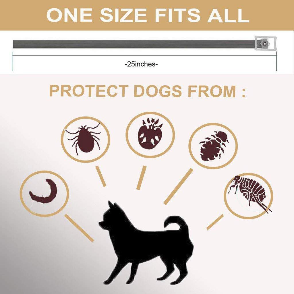 Dog Flea and Tick Collars Natural Flea Prevention Collar for Cats One Size Fits All Adjustable (A) by Buolo-Shower (Image #4)