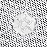 SilverStone Technology FARA R1 White Solid Side