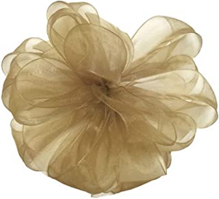 "product image for Offray Berwick LLC 429730 Berwick Simply Sheer Asiana Ribbon - 1-1/2"" W X 100 yd - Champagne Ribbon"