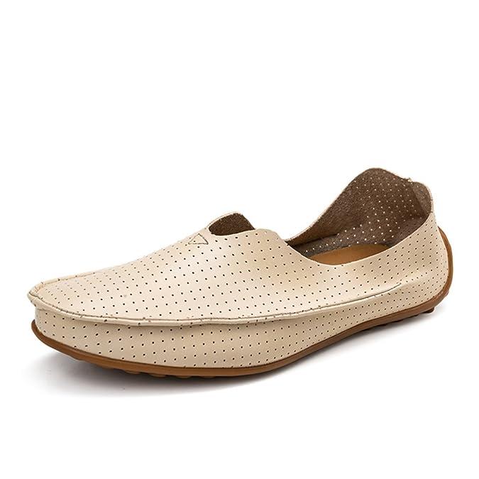 Zapatos de hombre de verano/zapatos casuales/Los zapatos de ventilación de guisantes/El conductor de un pedal de zapatos/Zapatos marea coreanos-D Longitud del pie=25.3CM(10Inch) ySR9UTrEE