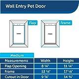 PetSafe New Wall Entry Dog and Cat Door - Pet