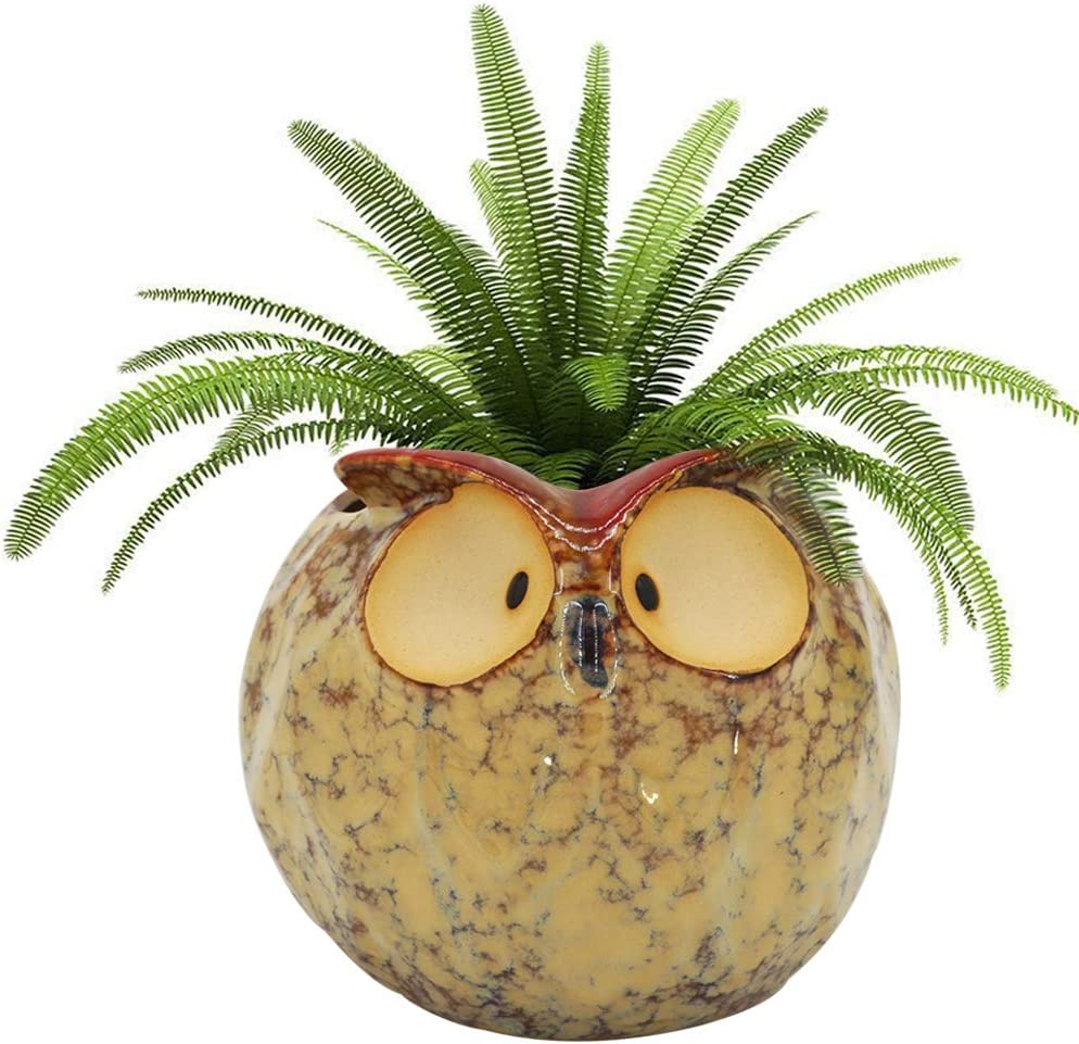 GeLive Owl Planter Ceramic Succulent Plant Pot Fun Animal Flower Container Decoration Windowsill Box with Drainage Hole (Fat Owl Planter)