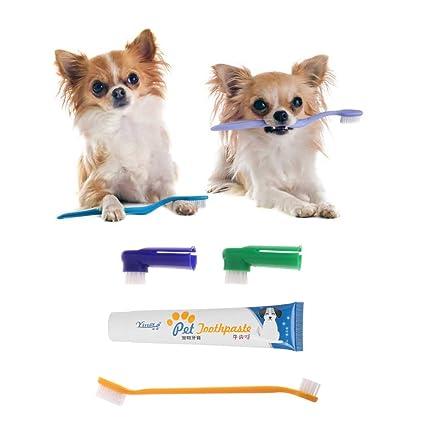 Yoli 4 pcs cepillo de dientes pasta de dientes el cuidado dental para perro y gato