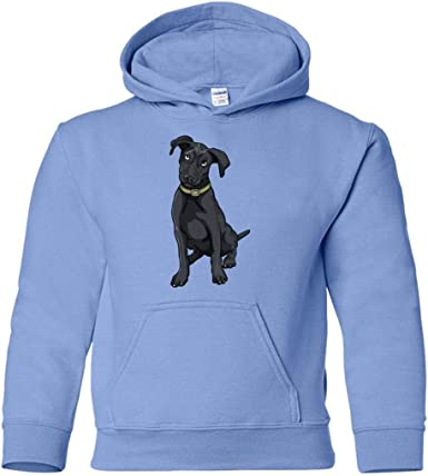 Funny Gift for Cute Dog Lovers Weezag Poodle Sweatshirt