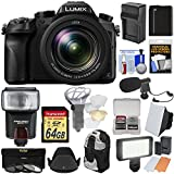 Panasonic Lumix DMC-FZ2500 4K Wi-Fi Digital Camera with 64GB Card + Battery & Charger + Backpack + Flash + Soft Box + LED Light + Mic + Kit