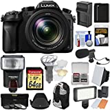Panasonic Lumix DMC-FZ2500 4K Wi-Fi Digital Camera 64GB Card + Battery & Charger + Backpack + Flash + Soft Box + LED Light + Mic + Kit