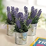 MyGift-6-inch-Artificial-Lavender-Plant-Decor-Faux-Flowers-with-Metal-Planter-Pot-Set-of-3