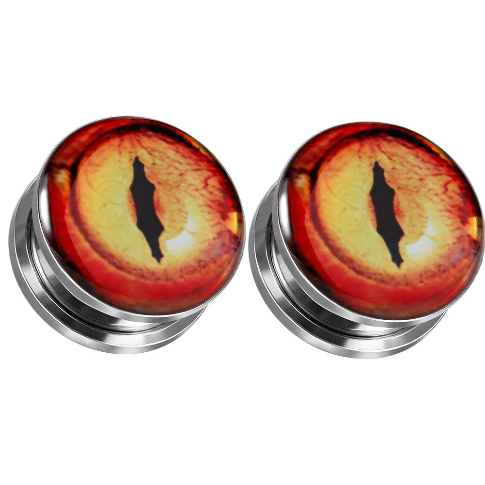 Fashion Plugs and Tunnels COOEAR Gauges for Ears Flesh Earrings Stretcher Screw Picture Expander 2g to 1 inch.
