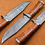 BK-3004 Handmade Damascus Steel 12.00 Inches Damascus Steel Bowie Knive – Camel Bone Brass Spicer Handle with Damascus Gurd/Pommel Review