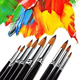 STARVAST Painting Brushes, 9pcs Professional