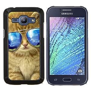 Gafas de sol del gato americano de pelo largo Maine- Metal de aluminio y de plástico duro Caja del teléfono - Negro - Samsung Galaxy J1 / J100