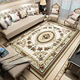 Pile Shag Rug Contemporary Living & Bedroom Soft Shaggy Area Rug Carpet Living Room Sofa Rug Court Style Padded Coffee Table Pillow Rug (Color : A, Size : 0.8 × 1.2 meters)