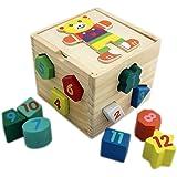 Toyshine Shape Sorter Wooden Puzzle for Toddler, 12 Geometric Blocks