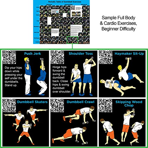 Free Weights Total Body Workout: Dumbbell Exercise Poster (Large): Periodic Table Of