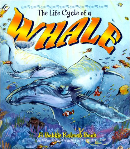 The Life Cycle of a Whale (Life Cycle of A...(Paperback))