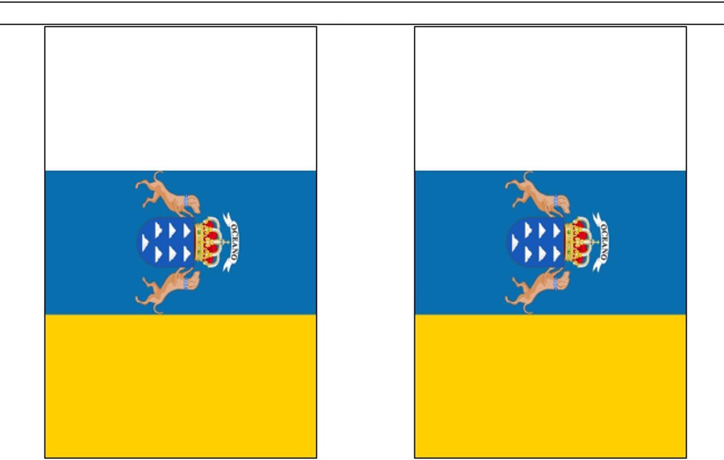 Guirnalda de banderines de poliéster con 30 banderines de España, 9 m, con 30 banderas: Amazon.es: Hogar
