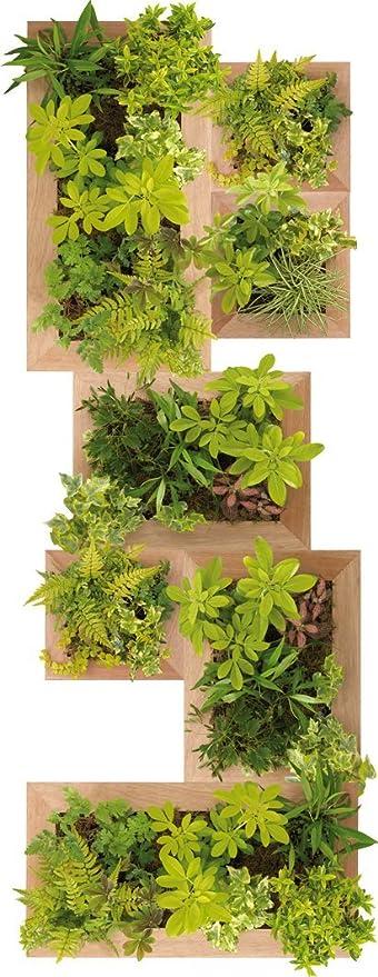 Plage 803700 Adhesivos de decoración-Jardin Vertical, 120 x 50 cm: Amazon.es: Hogar
