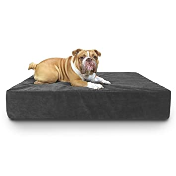 Amazon.com: Dogpatch diseños 8