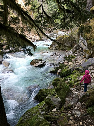 Hiking with Valentine - Stetattle Creek Trail, North Cascades National - Center North Park