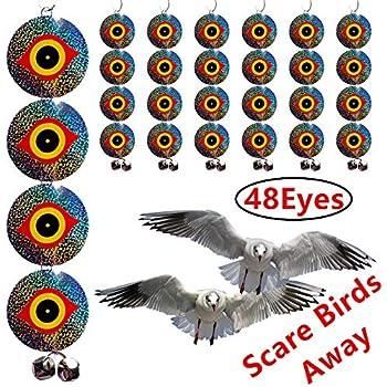 Amazon com : Bird-X Scare-Eye Bird Repellent Predator Eyes