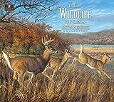 Legacy Publishing Group 2017 Wall Calendar, Wildlife