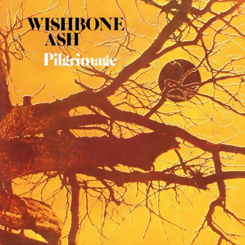 Pilgrimage by Wishbone Ash (2010-12-22) ()