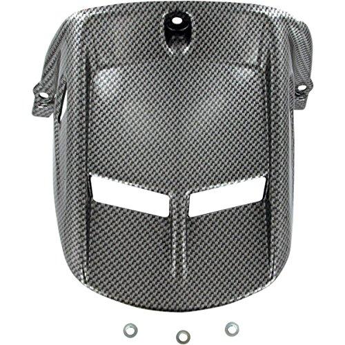 06 r6 carbon fiber - 6