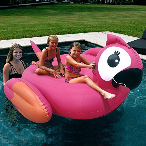 Parrot Pool Float (holds up to 2 people)