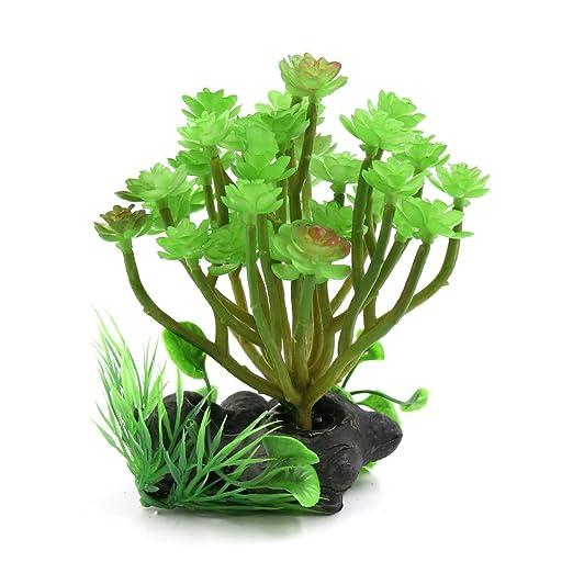 Sourcingmap® Verde De Plástico Acuario Terrario para Reptiles Plantas del Jardín W Base De Cerámica: Amazon.es: Productos para mascotas