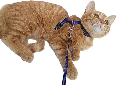 Arnés de nailon ajustable para gato con correa para cachorro y ...