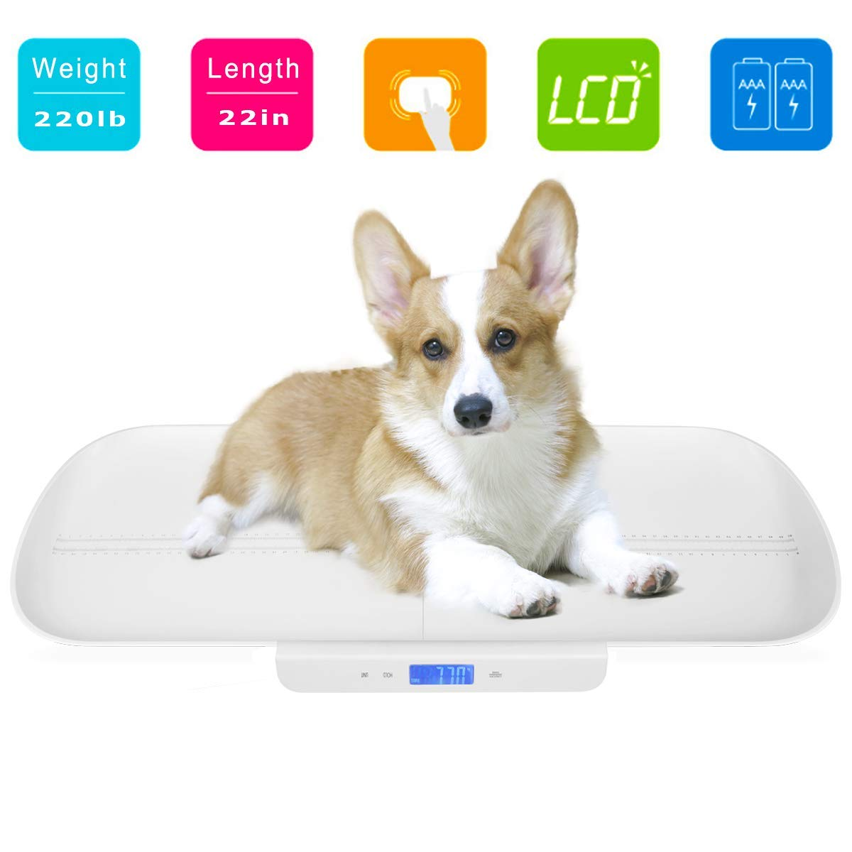 Amazon Scale For Pets Digital Baby Scale Infant Scale Mother