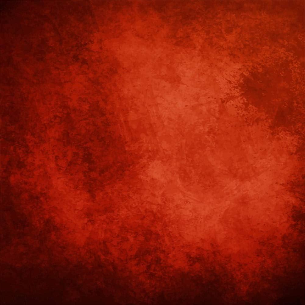 Cassisy 1,5x1m Vinyle Printemps Toile de Fond Jardin d/écor/é Cl/ôture en Bois Peu de lumi/ère Barils Fond D/écors Studio Photo Video Fete Photobooth Photographie Props