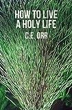 How to Live a Holy Life, C. E. Orr, 1477569871