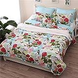 Brandream Queen Size Romantic Birds Butterfly Bedding Set Girls Quilt Set 3PCS