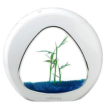Nobleza - Acuario pecera de diseño Moderno con Ventana de Cristal y luz LED, Color Blanco. Capacidad de 4L