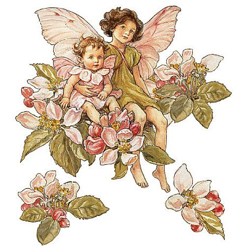 Blossom Wallpaper Apple - Wallies 13412 Apple Blossom Flower Fairies Wallpaper Mural