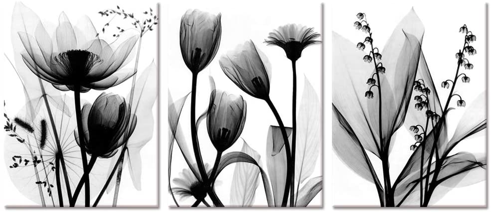 Visual Art Decor 3 Pieces Black and White Abatract Transparent Flowers Picture Canvas Prints Elegant Floral Simple Life Painting forModern Home Office Bedroom Bathroom Wall Decoration Ready to Hang