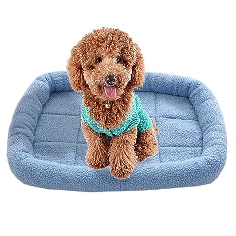 Cocoty-Store 2019 Nido para Mascotas, Suave y Acogedor Perro Mascota Nido cálido Nido