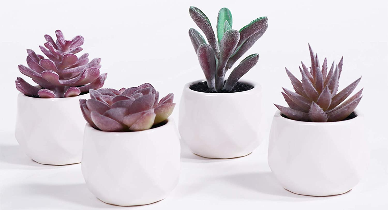 LITA Artificial Succulent Plants Fake Succulents Small Plants in White Ceramic Potted for Indoor Decor Office Room Desk Decoration4 Pots (Purple-1)
