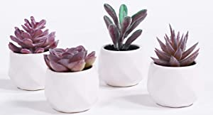 LITA Artificial Succulent Plants Fake Succulents Small Plants in White Ceramic Potted for Indoor Decor Office Room Desk Decoration4 Pots (Purple-1)