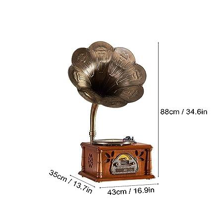 GOM Reproductor de grabación con Bluetooth y Radio y Brazo ...